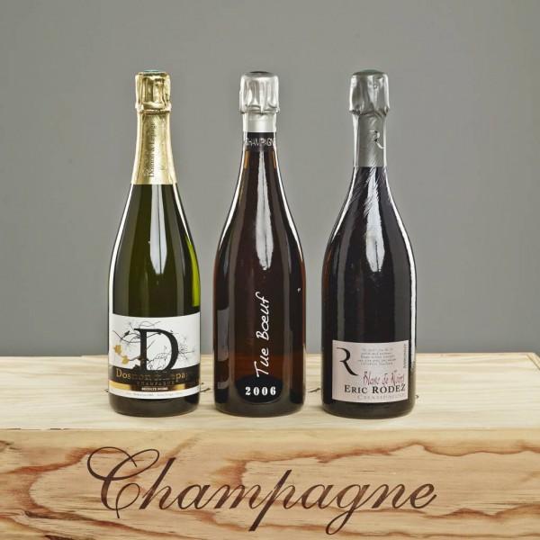 "Taster Pack ""Blanc de Noir Champagnes"""