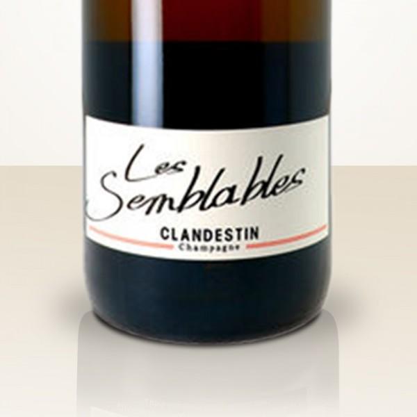 """Clandestin """"Les Semblables - Boréal"""""""