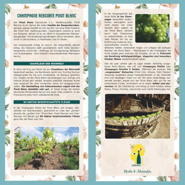 Information Card Pinot Blanc