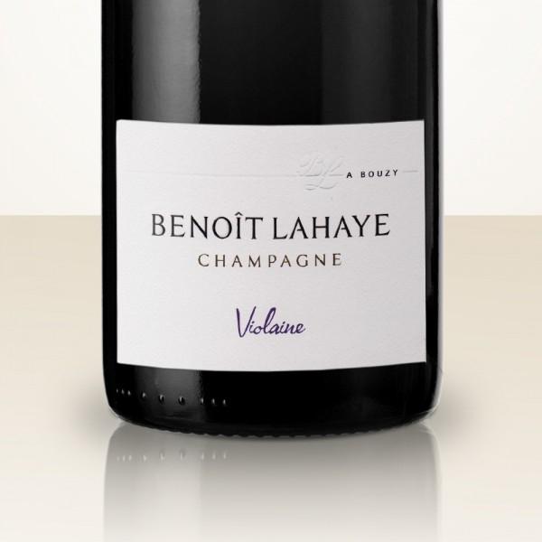 Benoît Lahaye Violaine 2014