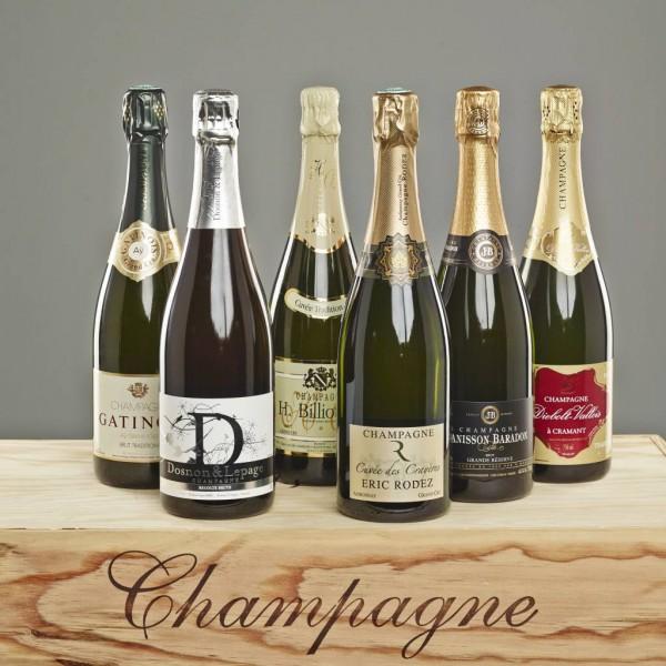 "Probierpaket ""Die besten Basis Champagner"""