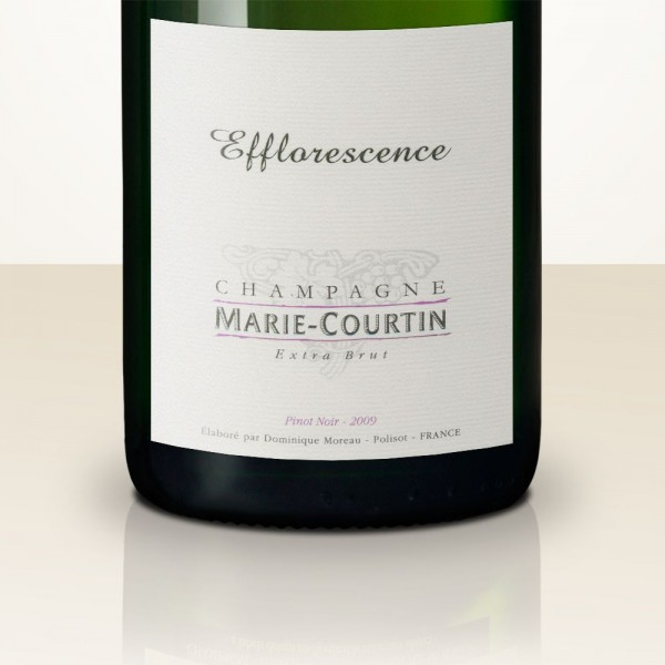Marie Courtin Efflorescence 2013 MAGNUM